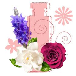 رایحه گل