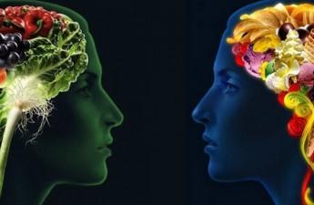 ۹ ماده مغذی که باعث افزایش سلامت ذهن میشوند