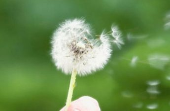 آیا با راهحلهای طبیعی رفع آلرژی آشنایی دارید؟