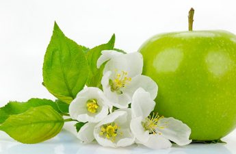 ۵ دلیل برای انتخاب سیب به عنوان میان وعده