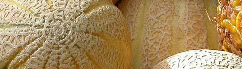 آروماتیک میوهای