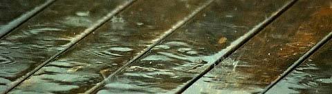 چوبی دریایی