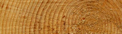 رایحههای چوبی