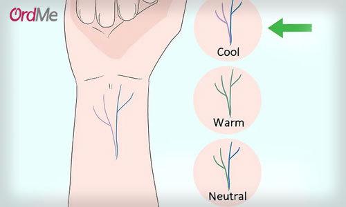 تشخیص از روی رگ دست