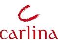 CARLINA کارلینا karlina  کارلینا  سارلینا