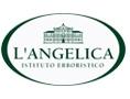 LANGELICA لانجلیکا لانجلیکا  لانجلیسا  لنجلیکا  لنجلیسا  LANGELIKA