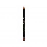 مداد لب Lechic