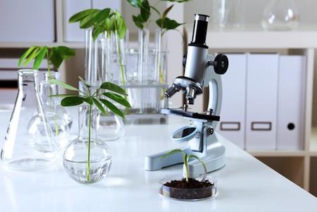 آزمایشگاه ژان دارسل
