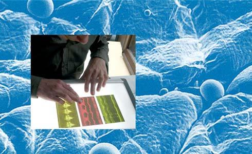 تاسیس آزمایشگاههای پوست شناسی لاروش پوزای